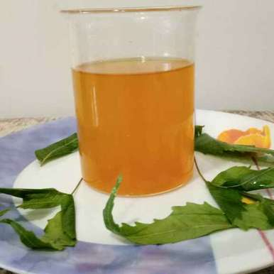 Photo of Detox drink by Dr.Kamal Thakkar at BetterButter