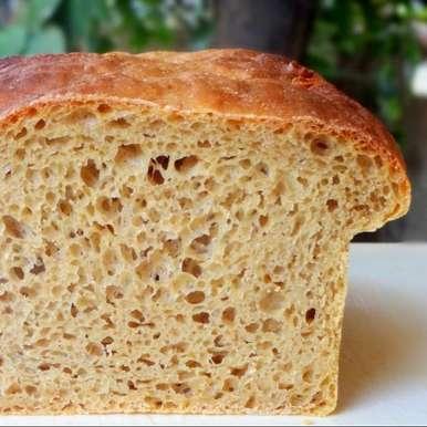 Photo of No Knead 100% Whole Wheat Bread by Namita Tiwari at BetterButter