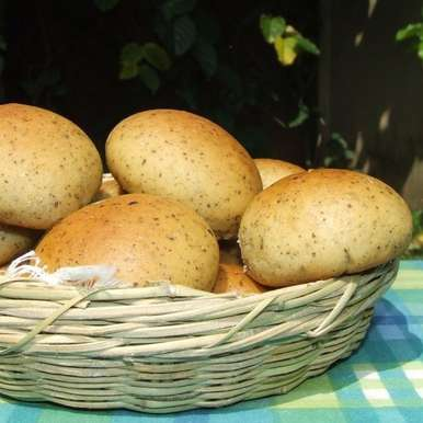 Photo of Potato Oregano Rolls by Namita Tiwari at BetterButter